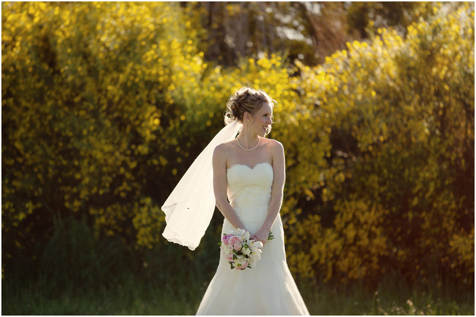 Christchurch_wedding_photographer_1682